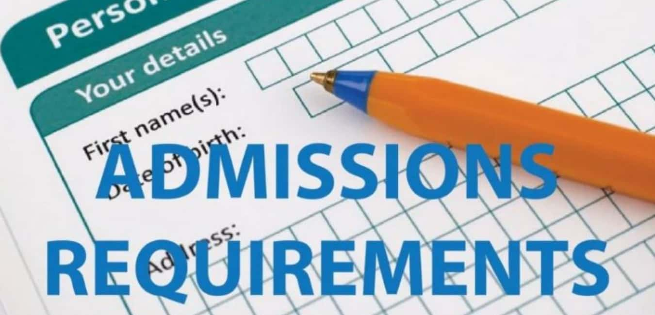 What Are the Entry Requirements for Law School