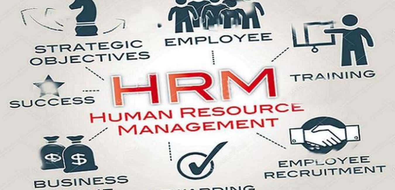What can you do with the Human Resource Management Degree