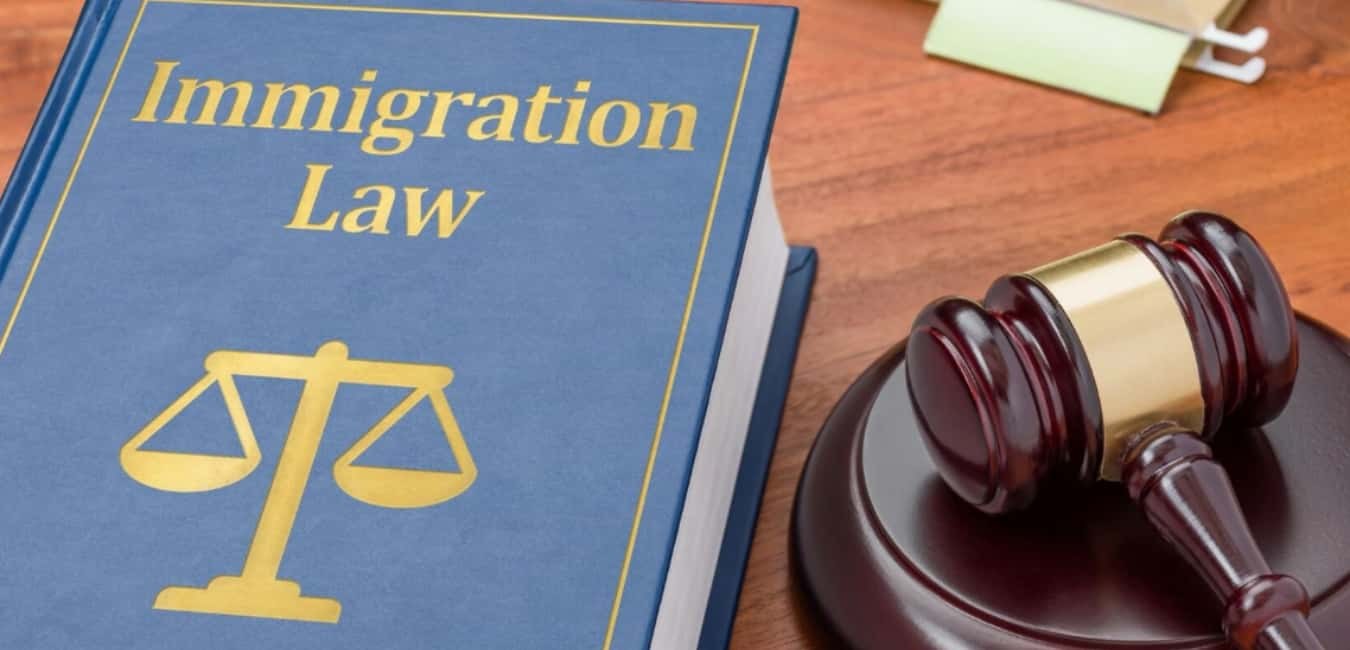 What is Immigration Law