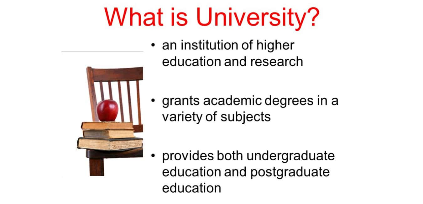 What is University